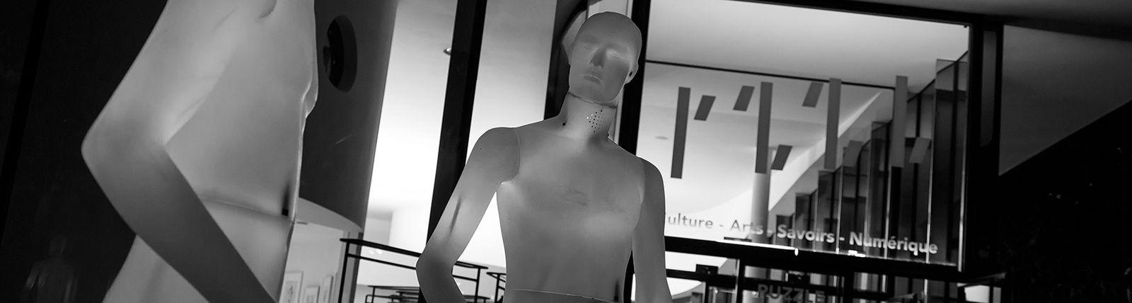 APPEL À PROJET ARTISTIQUE: La science et le monde de demain, l'Intelligence Artificielle