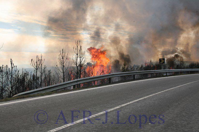 Importante incêndio na Freguesia de São Joaninho na estrada N225, próximo de Castro Daire.