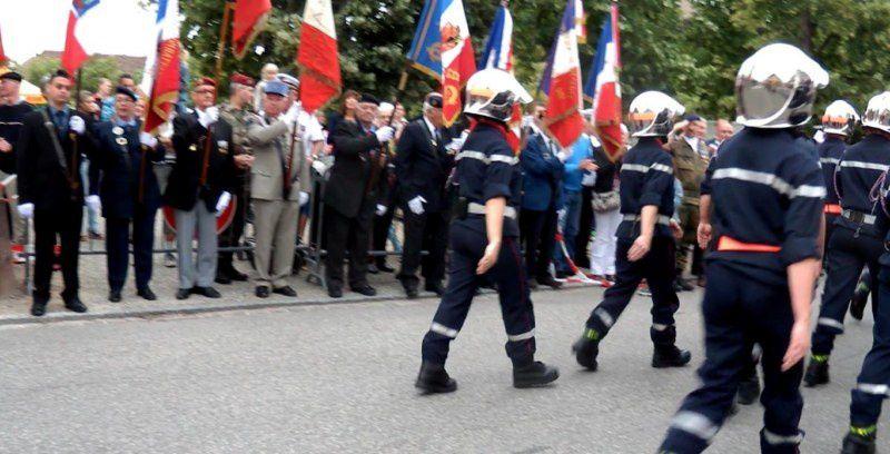 les troupes à pieds (et à pattes)
