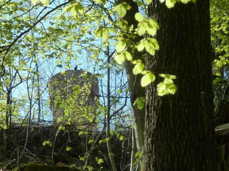 Un peu de tourisme: La Tour du Faudé (68)