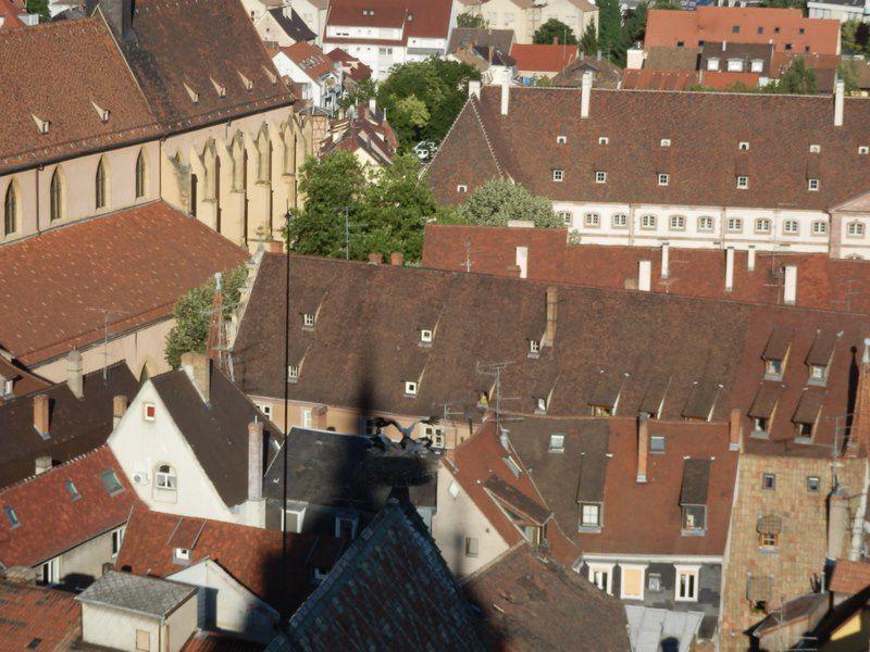 Tourisme : Colmar sous un autre angle