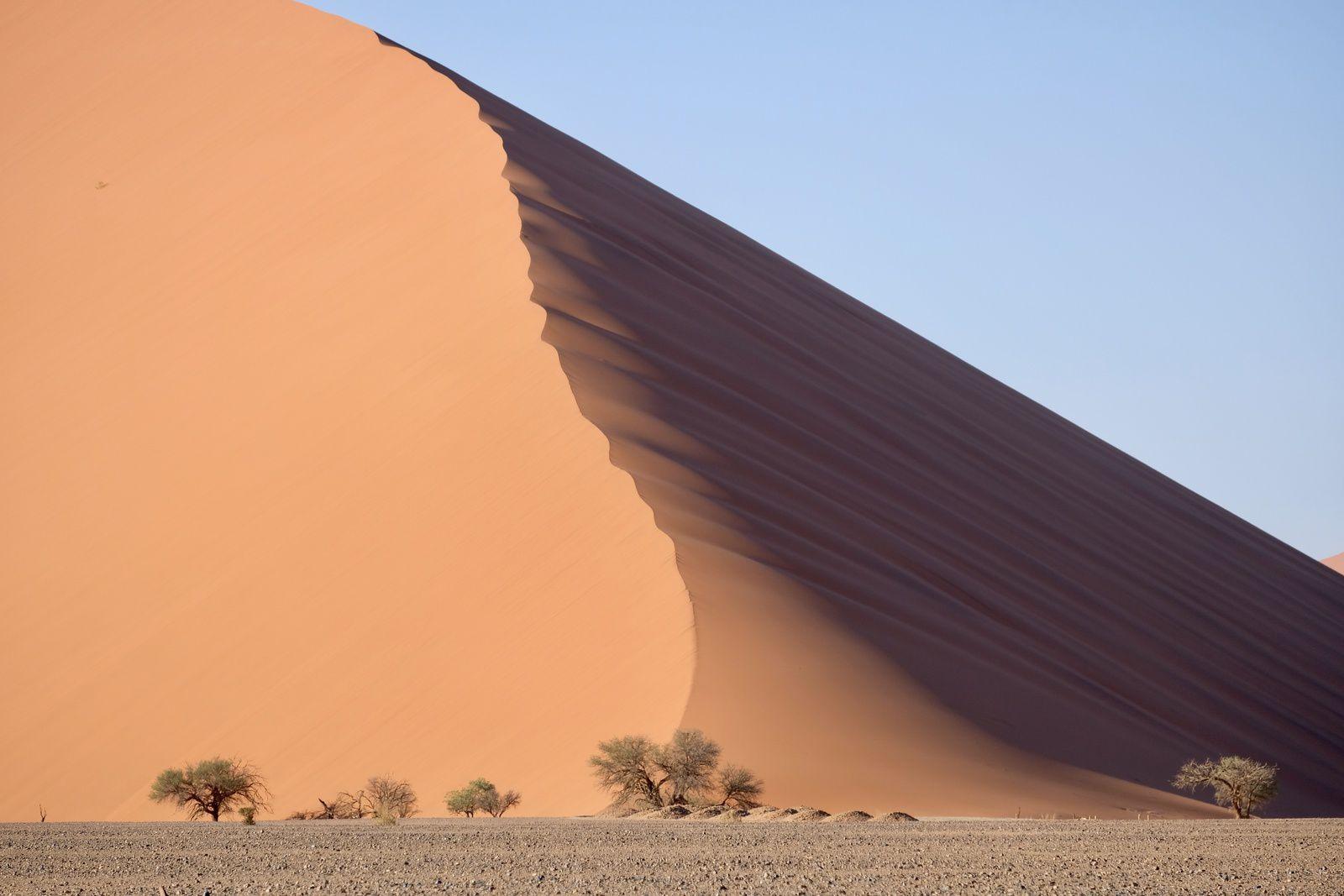 site de rencontres gratuit Namibie parents déjà datant site