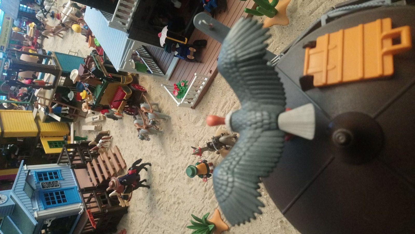 Du haut du château d'eau de Niederplay, un vautour guette