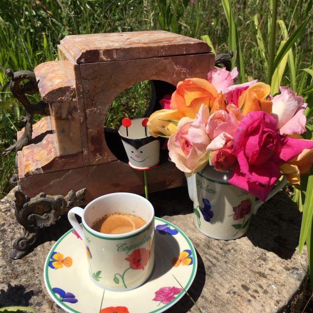 Café vagabond : mais où est donc Alice ? Isabelle lui aurait présenté le lapin ?