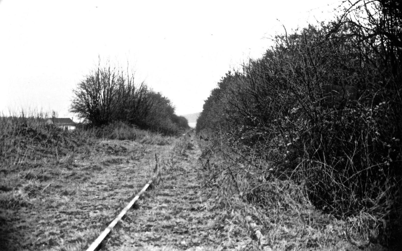 1980 La ligne ferrée désaffectée depuis quelques années (Photo collection MP)