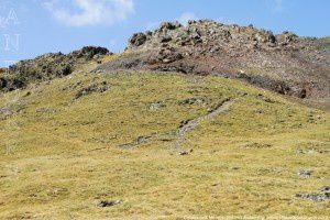 Collada dels Meners (2680m)
