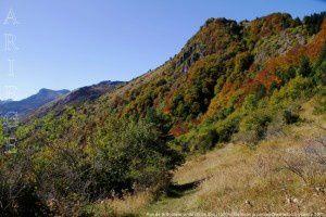 Roc de la Soulane vu du col de Sira (1500m)