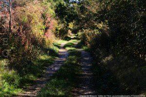 Chemin de Mirepoix