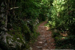 Sentier (900m)