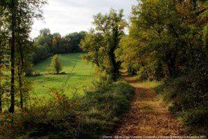 Chemin - Sainte-Croix Volvestre