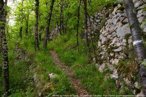 Montée au château de Teyrac - Roquefort-les-Cascades