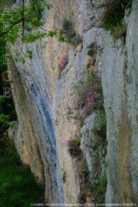 Falaises du Plantaurel - Roquefort-les-Cascades