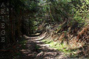 Sentier du Taus
