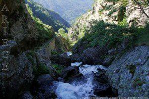 Ruisseau d'Escales (1290m)