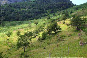 Terrasses de Larcat (1000m)