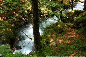Ruisseau d'Estours (970m)