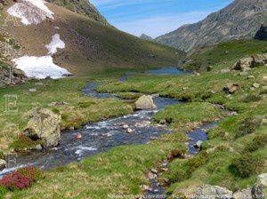 Ruisseau de Gnioure (vers 2050m)