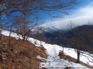 Sentier (vers 1450m)