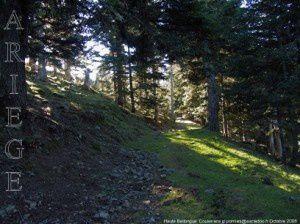 Sentier au col de l'Herbe Soulette