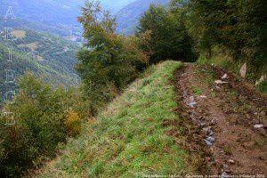 Piste forestière (1400m)
