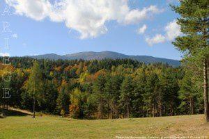 Plateau de Mounouscle