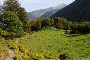 Col de la Crouzette (1350m)