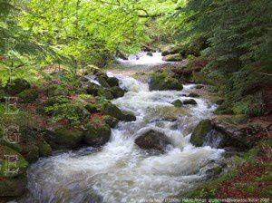 Ruisseau du Najar (1350m)