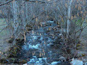 Ruisseau du Lasset (922m)