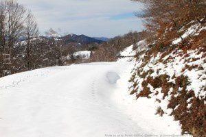 Route du col du Portel (1300m)