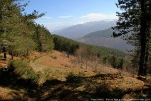 Piste (1000m)