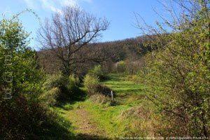 Chemin de Montfa