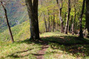 Sentier d'Azas (642m)