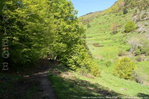 Vallée de l'Ourza (1390m)