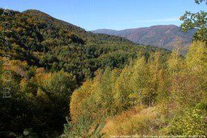 Chemin d'Arnave (586m)