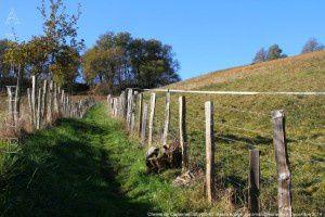 Chemin de Castelmascart (400m)