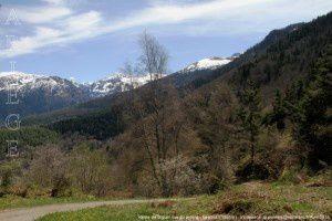 Vallée de Siguer vue du pylône - Lercoul (1295m)