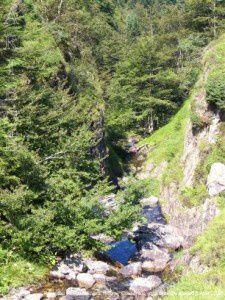Ruisseau du Fouillet (vers 1400m)