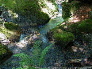 Ruisseau du Fouillet (vers 1000m)