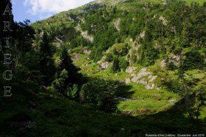 Ruisseau d'Ars (1480m)
