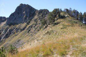 Pic de la Camisette vu de la Bague (2273m)