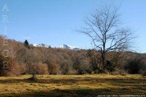 Jasse de Lujat (1280m)