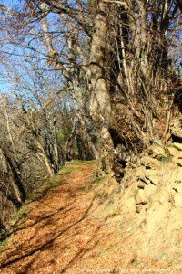 Chemin d'Ampriels (1050m)