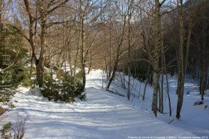 Chemin du col de la Crouzette (1366m)