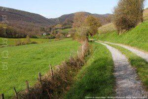 Chemin du vieux village - Montégut-Plantaurel