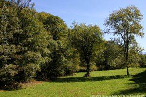 Les Chartels - Serres-sur-Arget
