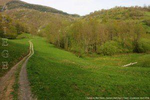 Chemin du Mail Blanc - Salsein-d'en-Haut (734m)
