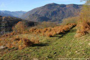 Descente à Jarnat (657m)