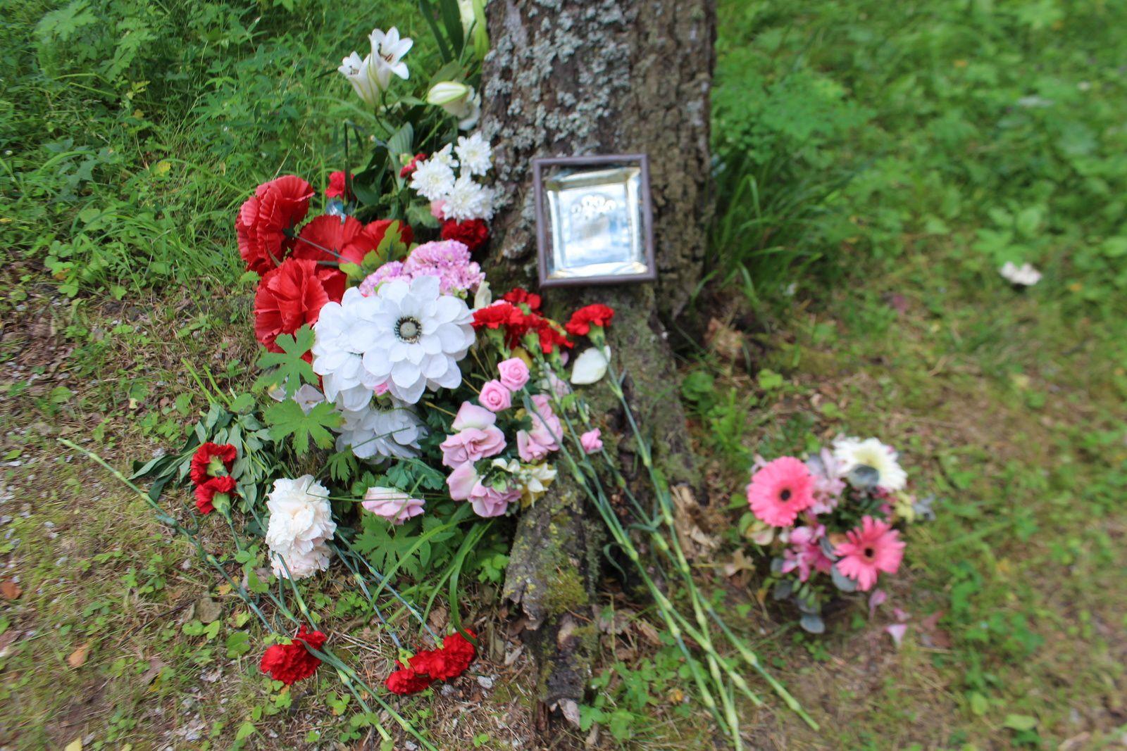 Centenaire de l'assassinat de Nicolas II et des siens. 2e partie : Parassionkov log, le lieu de sépulture oublié