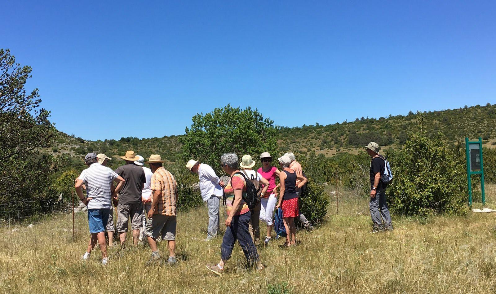 Retour sur le terrain pour voir le dolmen, classé monument historique, et écouter les explications de Rémi Azémar sur les circonstances de sa découverte et les péripéties de sa fouille.