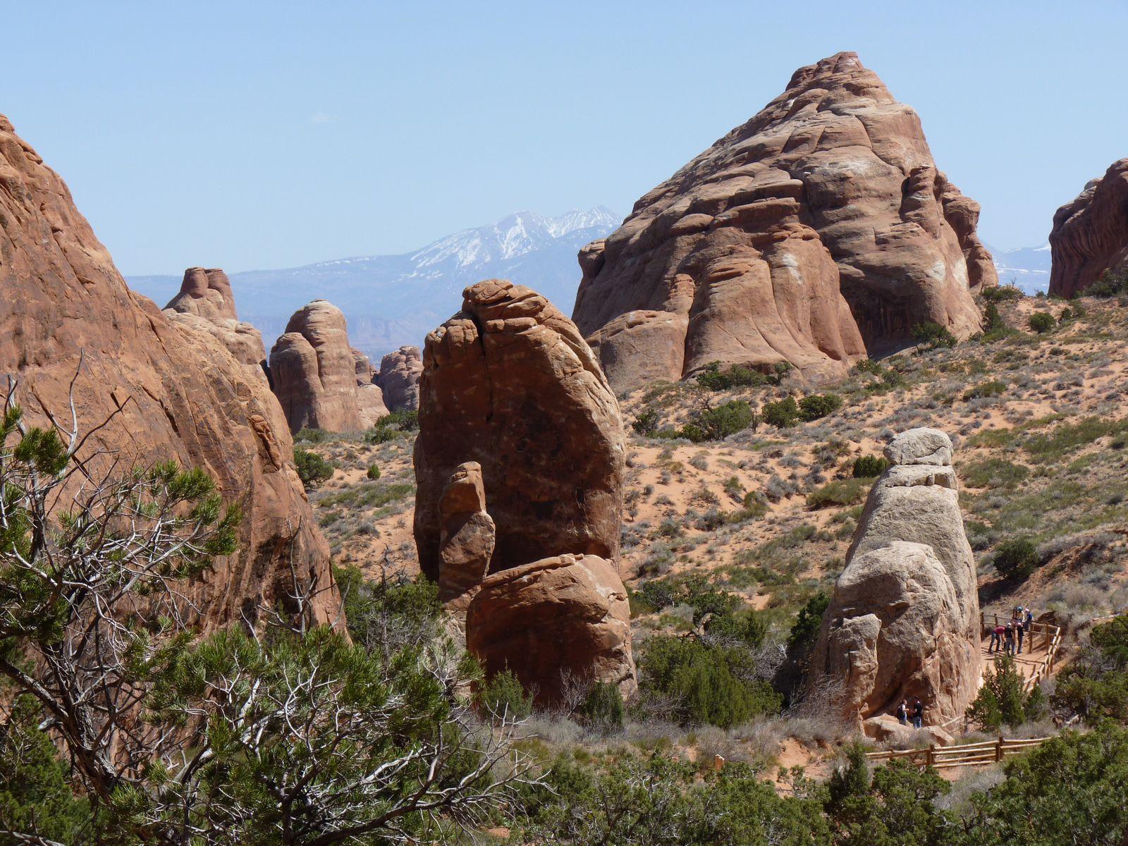 En toile de fond , les montagnes La Sal, grandiose.